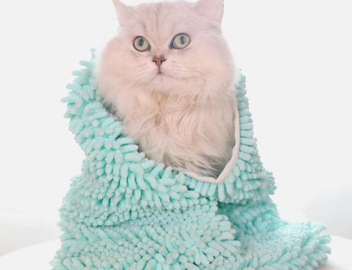 Wholesale soft and comfortable durable chenille fabric microfiber pet towel for cats